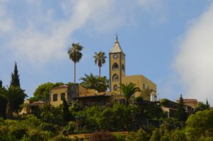 Photo Splurge – Canary Islands and Madrid Countryside