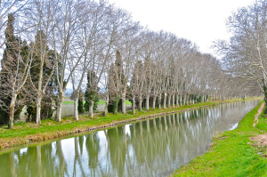 Canal du Midi - constructed mid 1600s to barge wine to and from the Mediterranean to Bordeaux