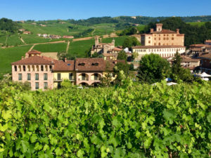 Comparing the Langhe Region of Italy to Napa, California