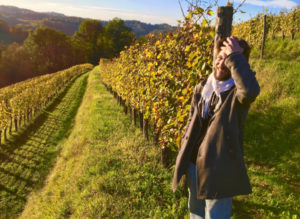 Searching for A Reluctant Wine Guru In Jurançon