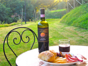 Etrsucan Wine, and New Blog Format